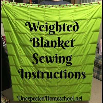 Unexpected Homeschool: Weighted Blanket Sewing Instructions